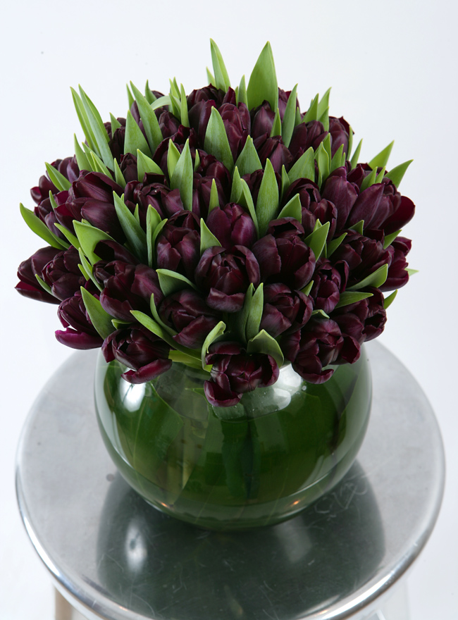 Tulip Arrangement - Choose Colour